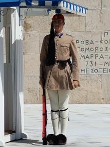 Evzones parlement