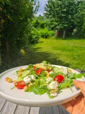 Salade roquette chevre