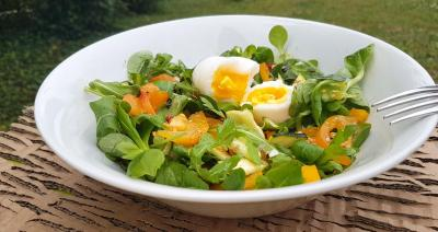 Salade tomates abricots et oeuf 1