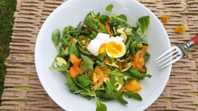 Salade tomates et abricots 1